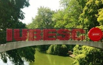 Un pod numit Iubire