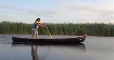 Asigurari pentru Delta Dunarii