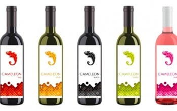 Cameleon in cinci nuante