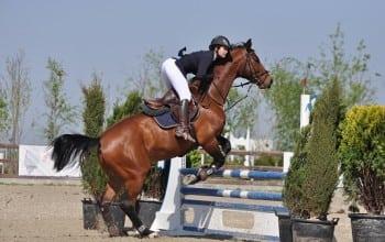 Numar record de calareti la Equestria