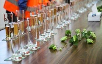 Heineken Romania – profit in crestere pe o piata in scadere