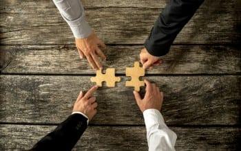 Fuziune strategica pe piata software-ului de business