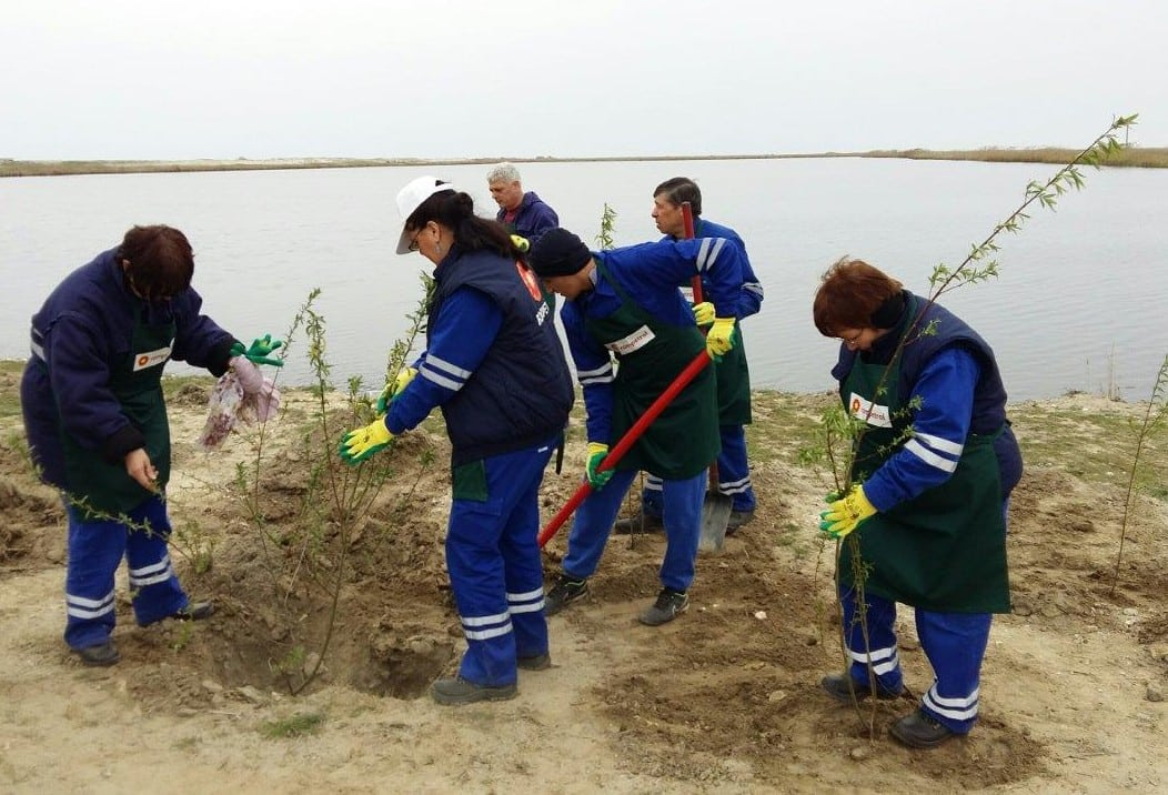 voluntari rompetrol