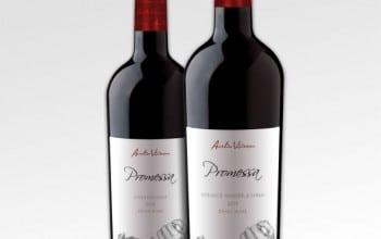 Doua noi promisiuni de la Aurelia Visinescu