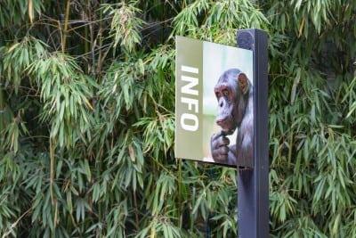 Vizita la Zoo Sibiu cu ajutorul ghidului virtual