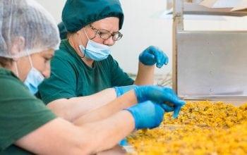Fares – certificare pentru siguranța alimentului și calitate