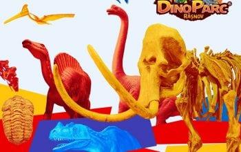 Colecție de exponate românești la Dino Parc