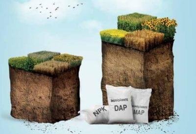 Agricover – profit de 12,2 mil lei pe divizia Agri-Business