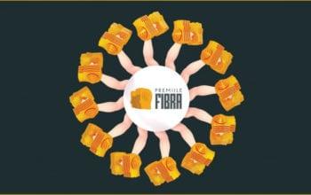 Câștigătorii Premiilor FIBRA 2017