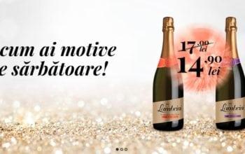 Halewood Wines & Spirits, de acum și online