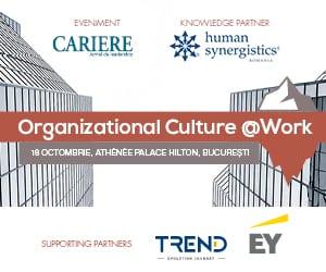 Organizational Culture @Work