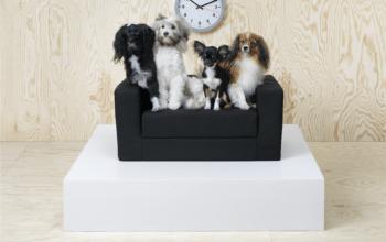 IKEA lansează o colecție pentru posesorii de animale de companie