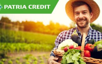 Patria Credit, profit în creştere