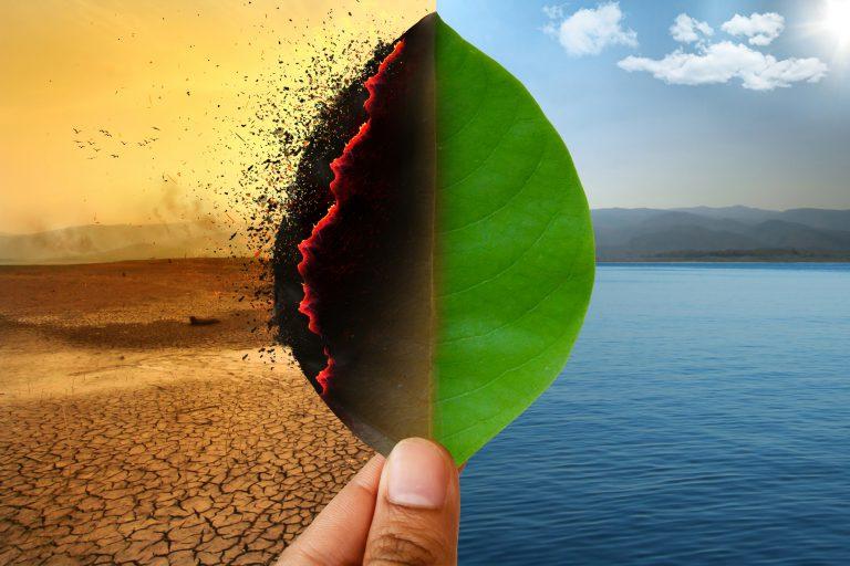 emisiilor de gaze